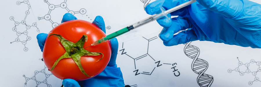 Tecnología-de-los-alimentos-III