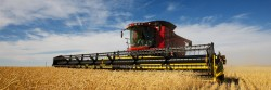 Carrera de agroindustria