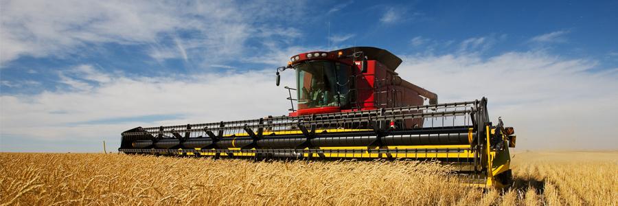 carrera-de-agroindustria-II