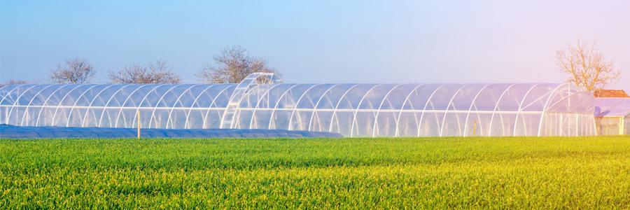 carrera-de-agroindustria